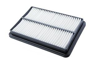 Estero house filtration