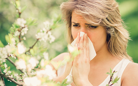 allergies Fort Myers